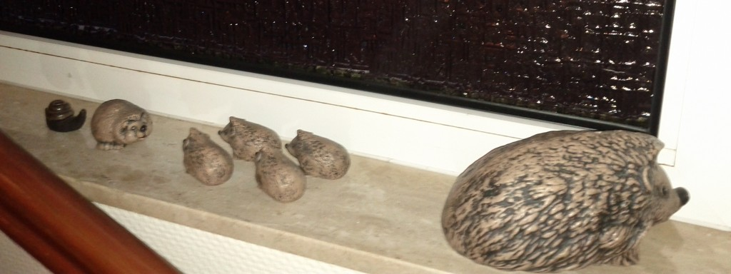 Hedgehog Family #1