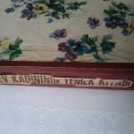 Ev Kadının Yemek Kitabı (Cover)